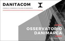 """1° rapporto """"Osservatorio Danimarca"""""""