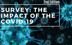 Survey The impact of the Covid-19